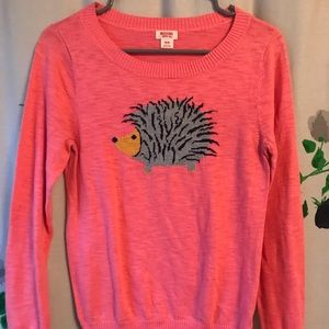 Pink Porcupine sweater